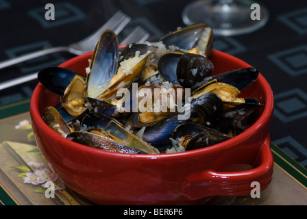 Cooked Mussels in red bowl - Stock Photo