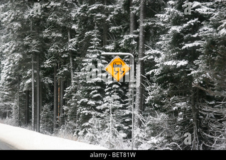 Road side sign shows slippery road ahead, Vancouver, British Columbia, Canada - Stock Photo