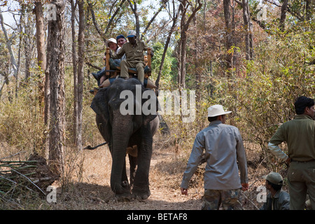 Mahout directs Indian elephant with adventure Eco tourists on wildlife safari ride through rural forest in Kanha - Stock Photo