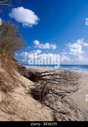 Beach erosion on Rainbow Beach Queensland Australia from rising sea levels - Stock Photo