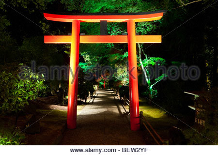Japanese Garden At Night japanese garden at night stock photo, royalty free image