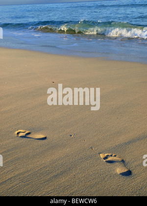 Footprints in wet sand, Varadero, Cuba - Stock Photo