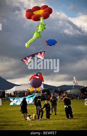 Kites at the time of the 'Cervolix' Air Festival, on the Gergovie plateau (La Roche Blanche - Puy de Dôme - Auvergne - Stock Photo