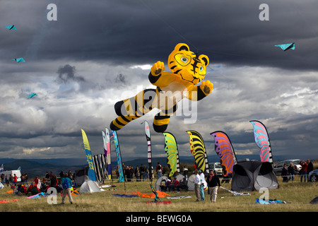 A tiger-shaped kite, at the time of the 'Cervolix' Air Festival (Auvergne - France). Cerf-volant en forme de tigre - Stock Photo