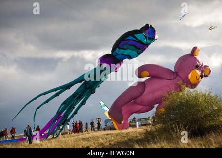 Octopus and bear-shaped kites at the time of the 'Cervolix' Air Festival (France). Cerfs-volants en forme de pieuvre - Stock Photo