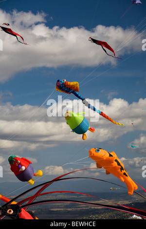 Kites at the time of the 'Cervolix' Air Festival (Auvergne - France). Cerfs-volants lors du festival aérien 'Cervolix' - Stock Photo