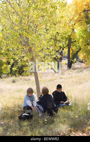 three nine year old boys sit under a tree to rest during a school field trip in Autumn, Albuquerque, New Mexico - Stock Photo