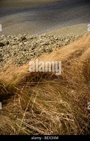 Rugged clay landscape, Crete Senesi, Tuscany, Italy - Stock Photo