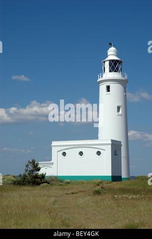 Hurst Point Lighthouse, Hampshire, England, UK - Stock Photo