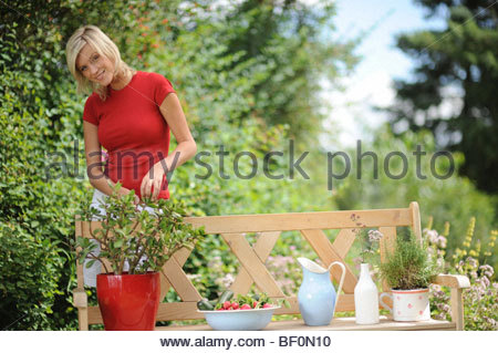 At Garden - Stock Photo