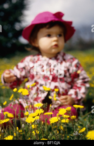 Faustine 16 months old playing in a yellow wild flower field - Stock Photo