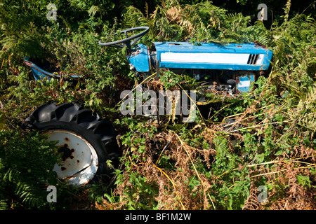 An abandoned tractor in undergrowth on St. Martin's, Isles of Scilly - Stock Photo