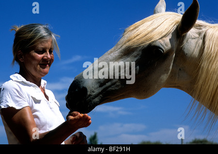 A smiling woman hand-feeding a white and gray horse - Stock Photo