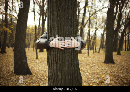 tree and hands of man ,special toned photo f/x, selective focus on hands