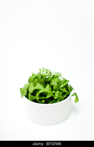 Bowl of rocket against a white background - Stock Photo