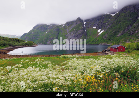 A little red wooden house standing alone by a beautiful fjord surrounded by mountains somewhere on Lofoten Islands - Stock Photo