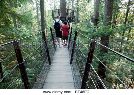 Tourists Walking Across Treetops Adventure - Capilano Suspension Bridge, North Vancouver, B.C. - Stock Photo