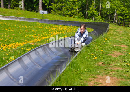 Young riding a sleigh on a dry bob slide in Spindleruv Mlyn, Karkanosze, Giant Mountains, Czech Republic, Europe - Stock Photo