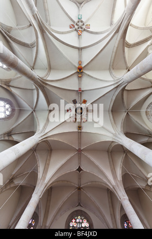 Vaulted ceiling with coat of arms, St. George's Cathedral in the Castle, Wiener Neustadt, Lower Austria, Austria, - Stock Photo