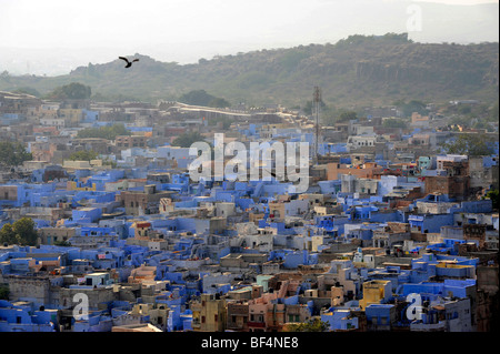 View of Jodhpur from the Mehrangarh Fort, 'The Blue City', Rajasthan, North India, India, South Asia, Asia - Stock Photo