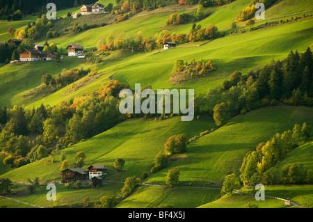 Houses and farms, Val di Funes, Dolomites, Trentino-Alto Adige, Italy - Stock Photo