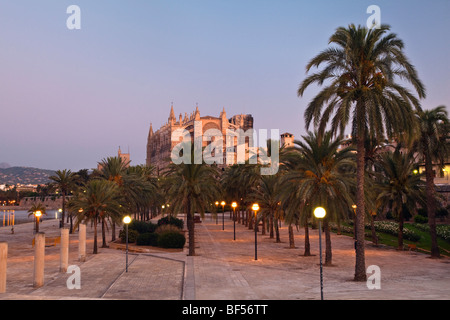 Cathedral La Seu at Palma de Mallorca, Mallorca, Majorca, Balearic Islands, Mediterranean Sea, Spain, Europe - Stock Photo