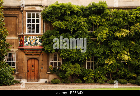 Coat of arms decorating a bay window, entrance to the Master's Lodge, facade covered with Wisteria (Wisteria sinensis) - Stock Photo