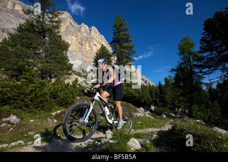 Mountain bike rider on single trail at Mt. Kreuzkofel, Naturpark Fanes-Sennes-Prags, Trentino, South Tyrol, Italy, - Stock Photo