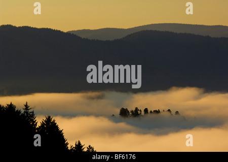 Sunrise light and coastal fog in the Klamath River valley, Del Norte County, California - Stock Photo
