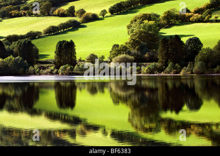 Perfect reflection of green fields at Talybont reservoir, Brecon Beacons in Wales taken on beautiful bright sunny - Stock Photo