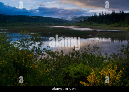 Storm clouds and fog at sunrise over Big Lagoon Marsh, Humboldt Lagoons State Park, California - Stock Photo