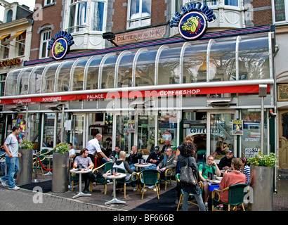 Bulldog Amsterdam Coffee Shop Joint Haschisch Gras Canabis Marihuana Dope Marijuana Drugs cannabis coffeeshop - Stock Photo