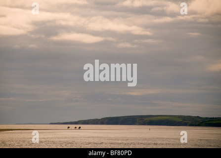 Horse riders in the evening on a beach in Donegal Bay Ireland - Stock Photo