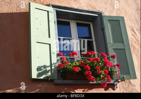 Window box containing red geraniums on a Swiss chalet - Stock Photo