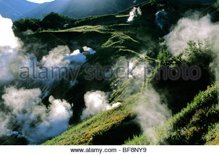 Fumaroles, Valley of the Geysers, Kronotsky Nature Reserve, Kamchatka, Russia - Stock Photo