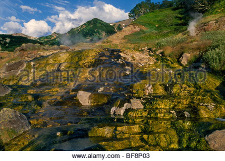 Hot springs, Valley of the Geysers, Kronotsky Nature Reserve, Kamchatka, Russia - Stock Photo