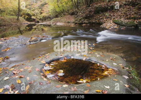 Fall leaves on rock and stream, Raven Rock State Park, Lillington, North Carolina, USA - Stock Photo
