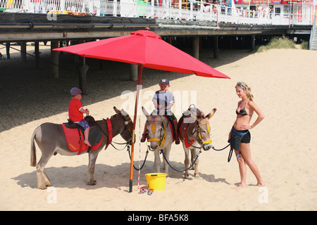 Children get ready for a donkey ride on the beach at Great Yarmouth, Norfolk, England - Stock Photo