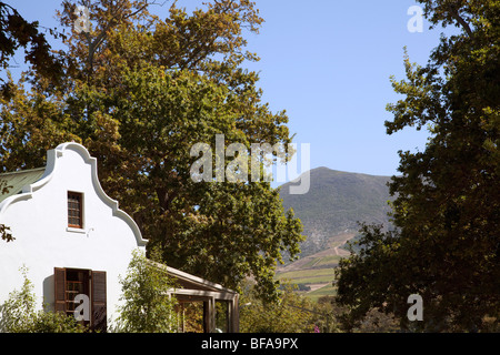A colonial building sits at the heart of a vineyard in the wine-growing Constantia region of South Africa, near - Stock Photo