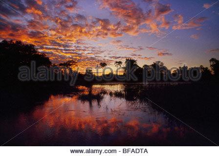 Lagoon at sunset, Okavango Delta, Botswana - Stock Photo
