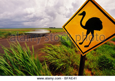 Road sign warning of rheas crossing near Emas National Park, Goias State, Brazil - Stock Photo