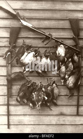 Hunting Still Life with Ducks & Shotguns - Stock Photo