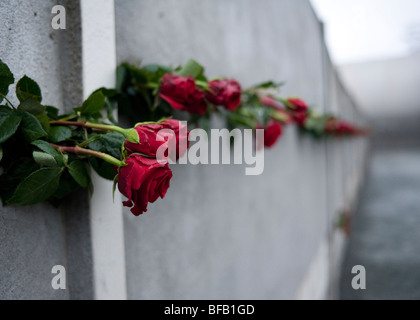 red roses in Berlin Wall on 20th anniversary of the fall of the wall to commemorate those who died trying to escape - Stock Photo