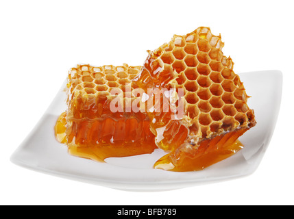 Yellow honeycomb wax cell detail slice on white plate - Stock Photo
