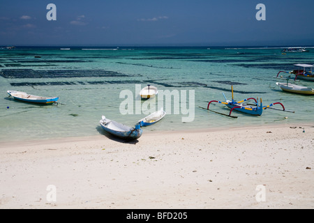 Boats on Lembognan Island Beach, Bali. The seaweed farms are clearly visible in the warm shallow waters just off - Stock Photo