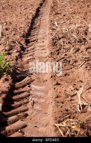 Tractor tyre tread in soil - Stock Photo