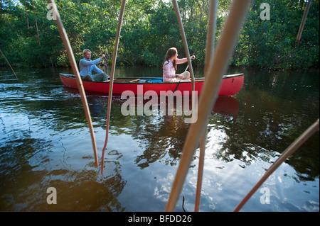 A couple paddles a canoe in Everglades National Park, Florida. - Stock Photo