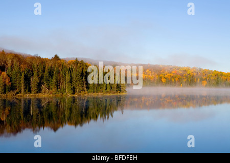 Morning mist over Brewer Lake, Algonquin Provincial Park, Ontario, Canada - Stock Photo