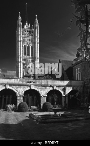 Palace of Westminster - Victoria Tower seen from St Catherine Chappel Gardens - Stock Photo