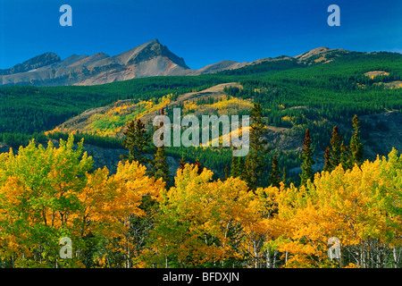 Autumn scenic in the Canadian Rockies, David Thompson Highway, Alberta, Canada - Stock Photo
